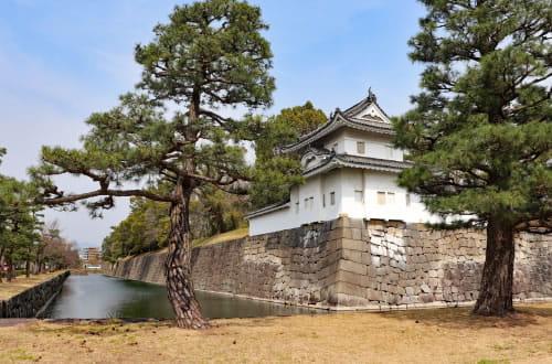 Nijo Castle (Nijojo)